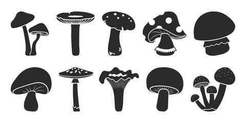 Fototapeta Cartoon vector mushrooms clipart, doodle icon set. Black silhouettes isolated on white background. Nature illustration obraz