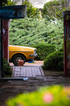 Yellow old car for travel and parked in a narrow small street on a summer day against the backdrop of a garden with a lot of bushes, palms, tropical trees