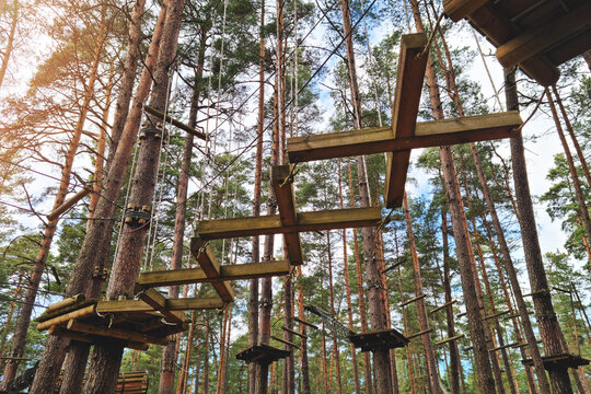 rope course, obstacle track high in the trees in outdoor adventure park