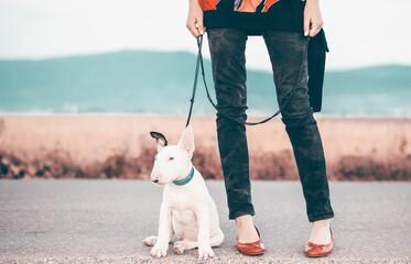 Fototapeta Woman walking with her dog