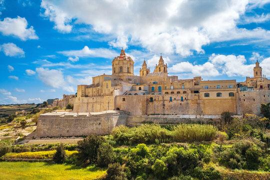 Mdina city - old capital of Malta. Sunny day, nature landscape