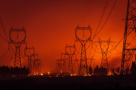 Forest Fire Under Transmission Lines