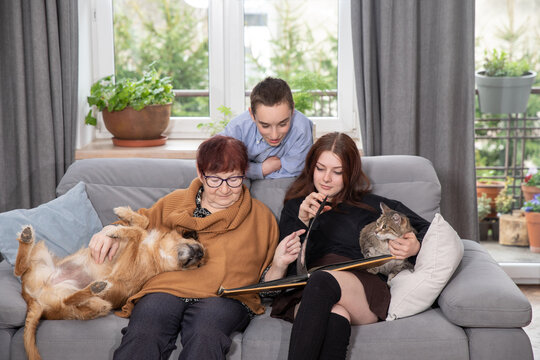 Family is looking at photo book in the living room. Grandma and her grandchildren looking at photo album together at home.