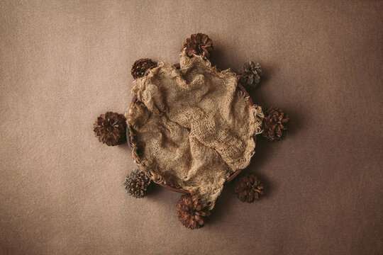 natural newborn background - brown bowl with pine cones and jute layer on brown and beige backdrop. Fall newborn backdrop