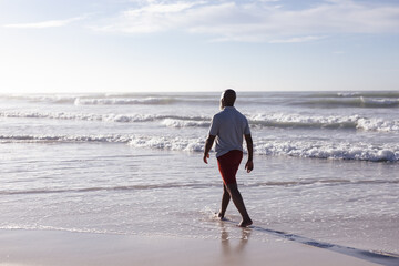 Rear view of senior african american man walking on the beach
