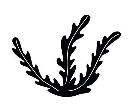 Seaweed icon three leaves black outline