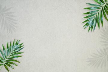 Fototapeta Bamboo leaves on cement background