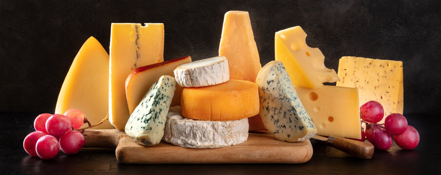 Cheese panorama with various types of cheeses, side view