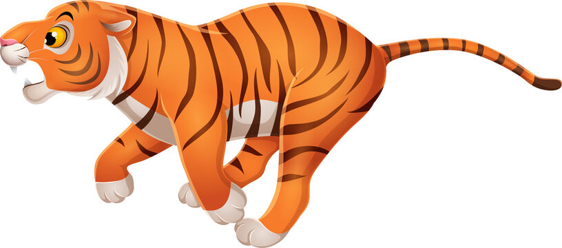Cartoon funny tiger running on white background