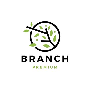 tree branch leaf logo vector icon illustration
