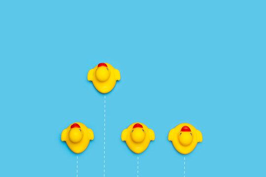Patos de goma sobre un fondo celeste liso y aislado. Vista superior. Copy space. Concepto: Trabajo en equipo