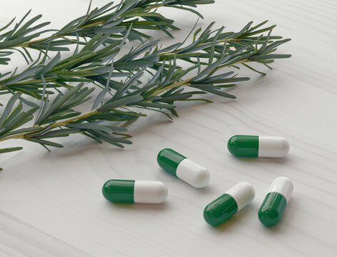 Rosemary or Herbs with alternative medicine herbal supplements and pills. 3d rendering