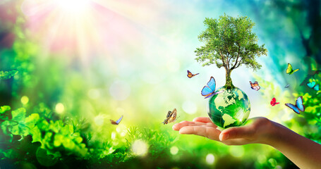 Fototapeta Environment - Tree Growth On Planet In Green Forest With Butterflies