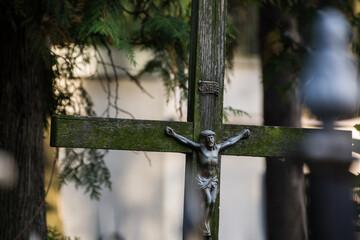 Fototapeta stary drewniany krzyż porośnięty mchem obraz