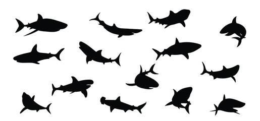 Fototapeta Shark silhouettes on a separate white background. Animal, fish.