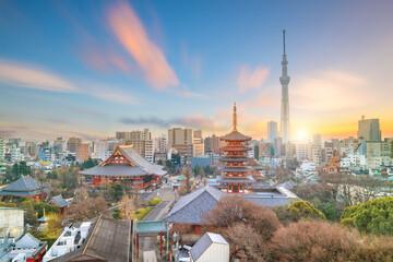 Uitzicht op de skyline van Tokyo in de schemering