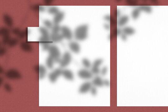 Paper top view shadow scene. White mockup. 3D render