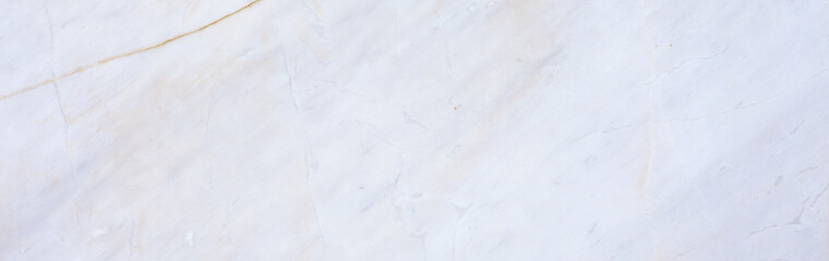 Abstract. Background image of marble with beautiful patterned donkey.