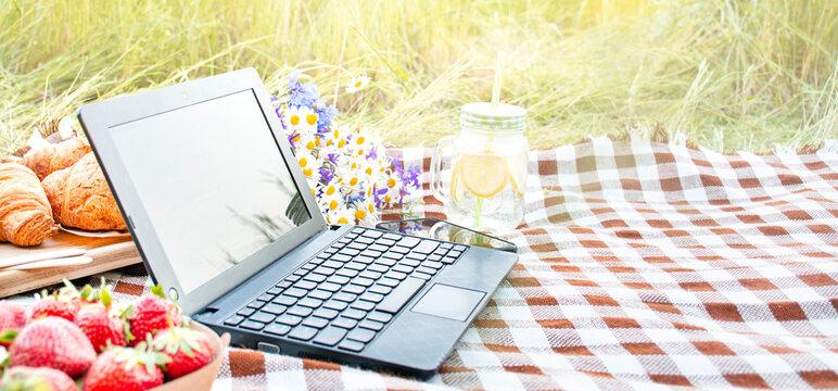 Working at a laptop at a picnic. Distant work. Modern life, freelancer. Copy space.