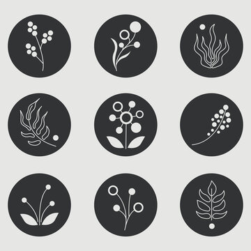 Set of abstract minimalistic floral and plant icons for social media decoration. Flat vector isolated illustration
