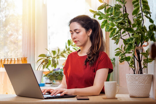 Freelance.A young, pretty woman is typing on a laptop while sitting at her Desk. Home decor, the sun outside the window.The concept of quarantine, self-isolation and remote work