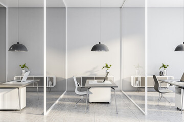Monochrome style interior design of openspace office with glass walls between workspaces
