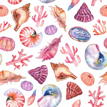 Watercolor seashells, coral and sea urchin pattern on white. Colorfull pattern for design textile, wallpapers, prints and banners.