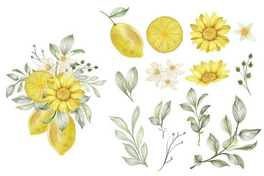 set of spring lemon flower and leaf isolated clip-art