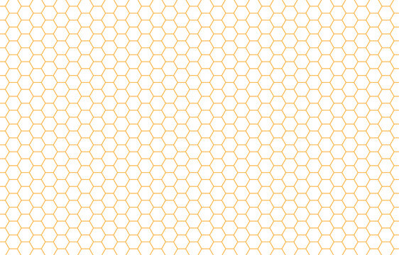 Hexagon Beehive Honeycomb yellow pattern seamless with white background banner vector