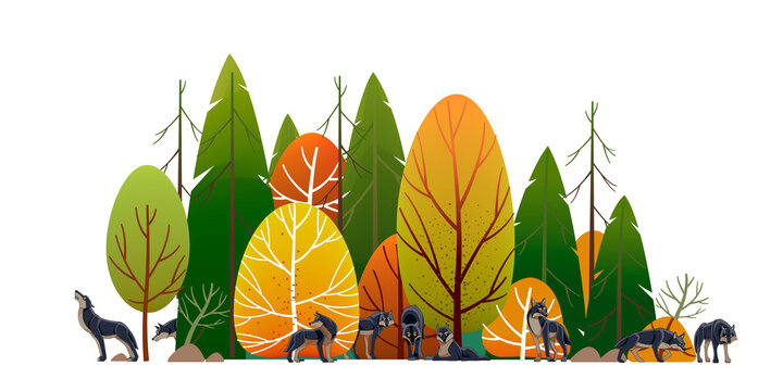 Wolf pack in the forest. Timber wolves hunt. Landscape, Green trees park, alley and foliage in summer with animals. Row of trees and shrubs. Cartoon vector illustration isolated on white background