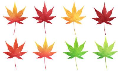 Fototapeta 秋の紅葉の水彩風のベクターイラスト素材 obraz