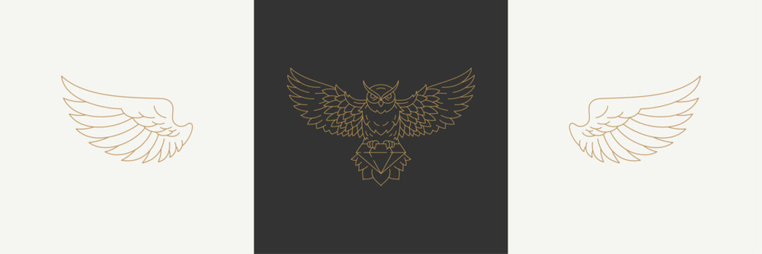 Magic linear wings of nocturnal wild owl in boho linear style vector illustrations set.