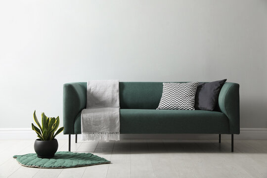 Stylish living room interior with comfortable green sofa and beautiful plant