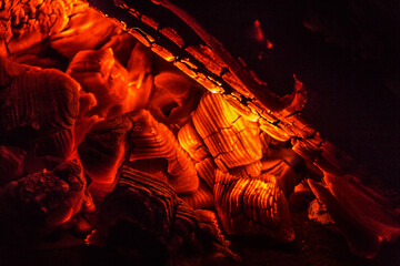 close up embers of fire in a campfire, burned wood