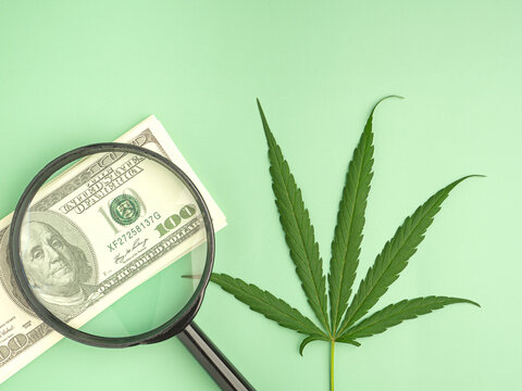 Top view of cannabis leaf and magnifying glass placed on US banknotes with a green background. Marijuana plantation for medical and business concept