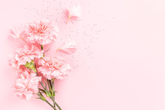 Pink carnations on pink background with confetti.