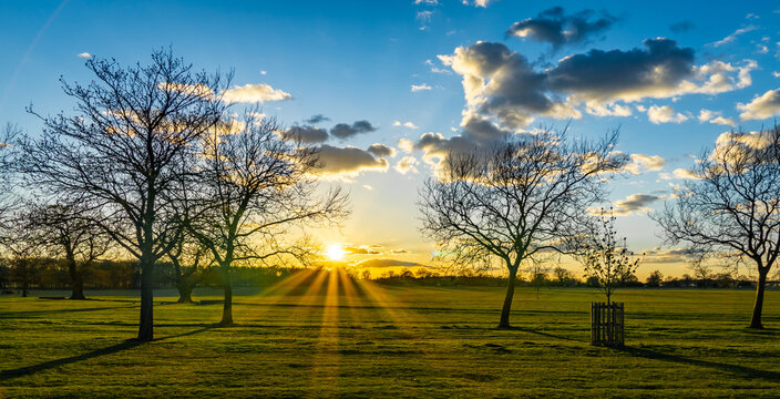 Wide shot of an empty green field with leafless trees and the sun shining in the background
