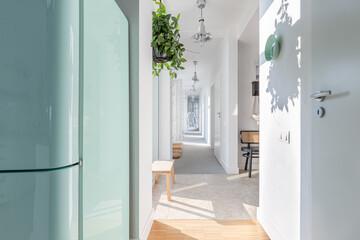Fototapeta Long white corridor with modern lightning, wooden furniture, green plant and armchair obraz