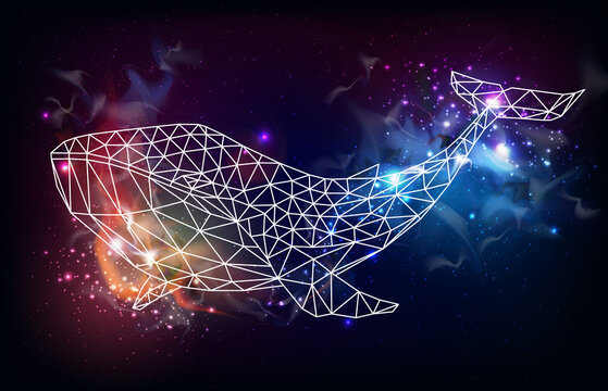 Hipster polygonal whale silhouette on outer space background. Vector illustration