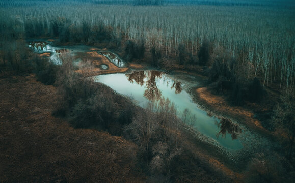 Aerial view of drying pond lake in secluded wooded area in cold autumn morning