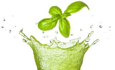 Basil leaf falling in green juice splash isolated on white. Herb healthy beverage.