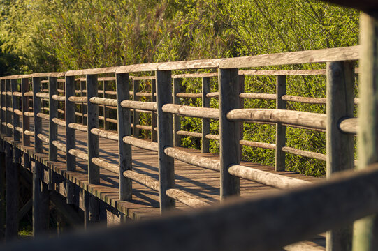 Reddish-brown wooden bridge or walkway in a natural environment in Las Doblas (Sanlucar La Mayor, Seville). Quiet place of great beauty and environmental value in a natural park. Selective focus.