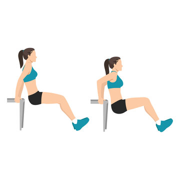 Woman doing bench tricep dips exercise flat vector illustration isolated on white background