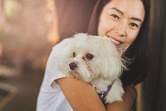 Woman pet owner holding shih tzu dog.