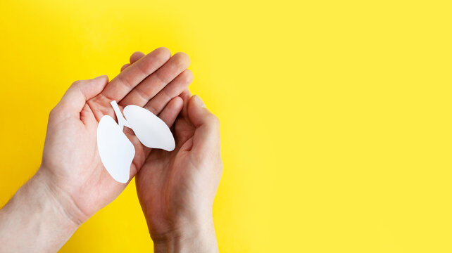 lungs in male hands on a yellow background. world tuberculosis day, world no tobacco day, lung cancer, Pulmonary hypertension, Pneumonia, copd, eco air pollution, organ donation, respiratory and chest