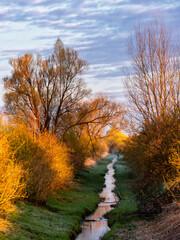 Wiosenny poranek nad stawami Dojlidzkimi, Podlasie, Polska