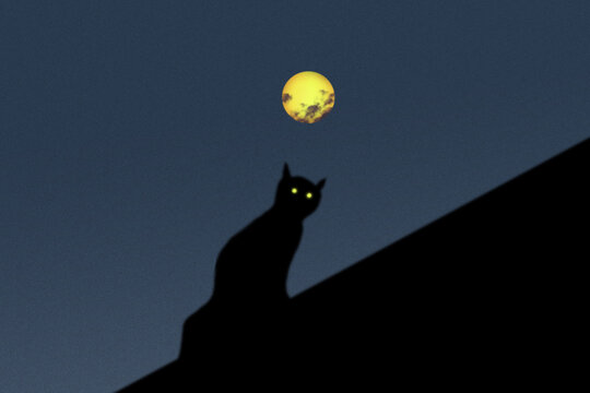 Black silhouette of a cat on the roof with glowing gel eyes in the full moon