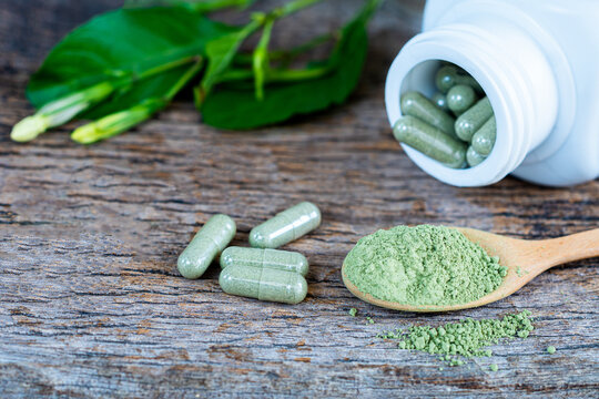 Close up,Andrographis paniculata powder, capsule and fresh andrographis paniculata herbal .Herb capsule with green herbal leaf and bottle
