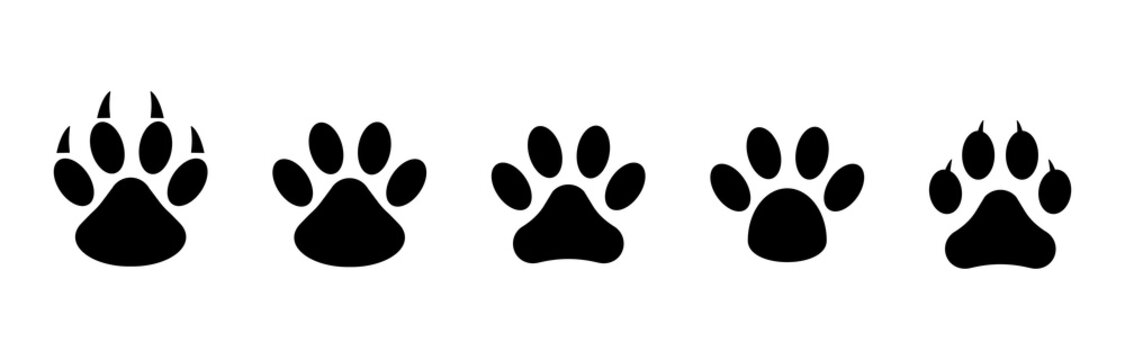 Animal footprints tracks icon.Paw print set. Paw foot trail print of animal. Vector on white background.