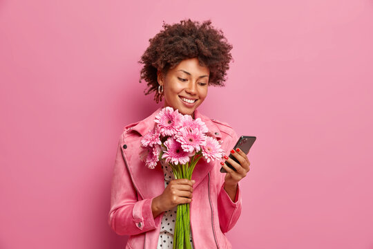 Glad Afro American lady in stylish clothes checks messages online gets congratulations on birthday holds beautiful bouquet of gerberas has happy mood isolated over pink background. Special occasion